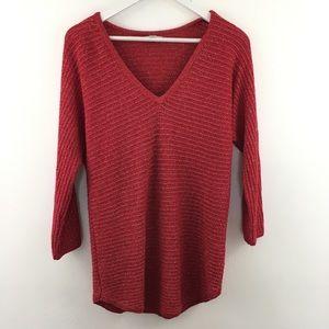 3/$22 New York & Company V-Neck Sweater